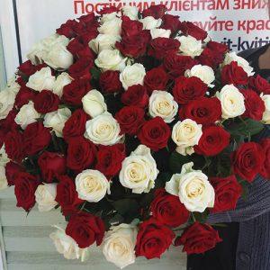 101 червона і біла троянда