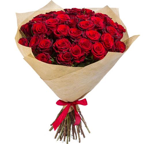 фото 35 червоних троянд
