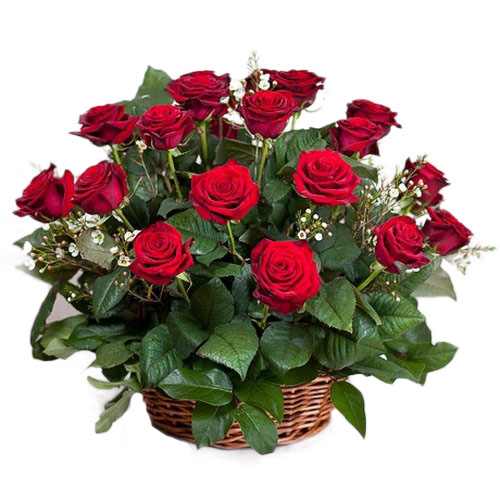 букет 21 червона троянда в кошику фото