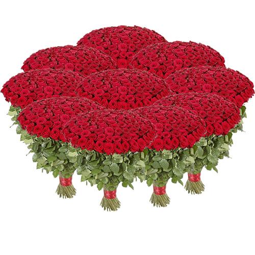 букет 1001 роза фото