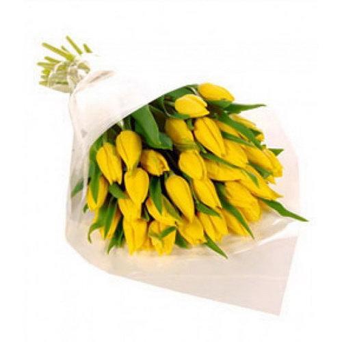 букет 25 жовтих тюльпанів