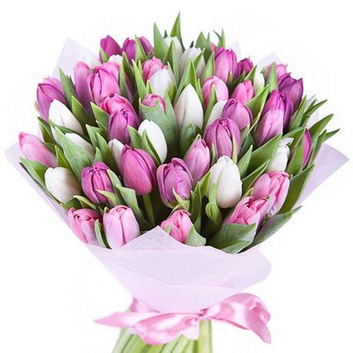 букет до свята 49 тюльпанів білих і рожевих