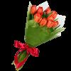 букет до свята 11 червоних тюльпанів