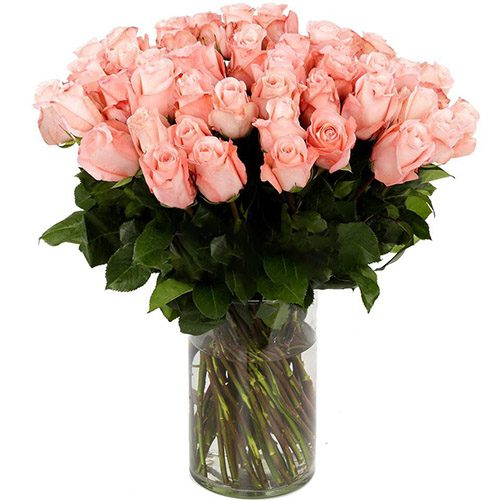 фото Троянда імпортна рожева (поштучно)
