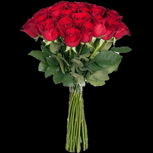 фото Розы экстра класса красная (поштучно)