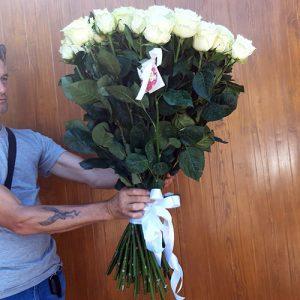 Троянда імпортна біла в Чернівцях фото