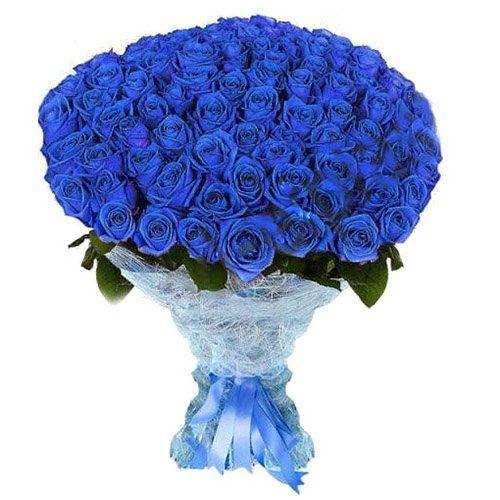 101 синя троянда фото букета