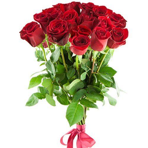 15 імпортних троянд фото