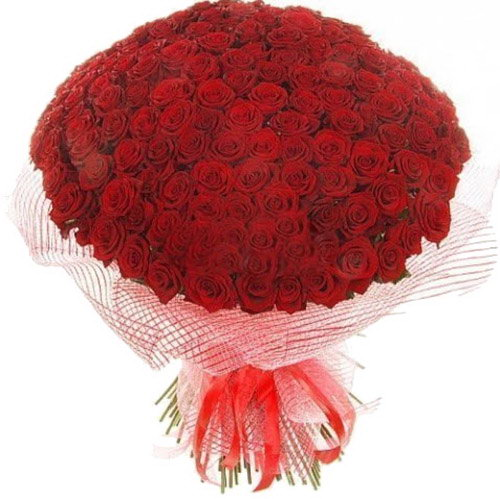 букет 201 червона троянда