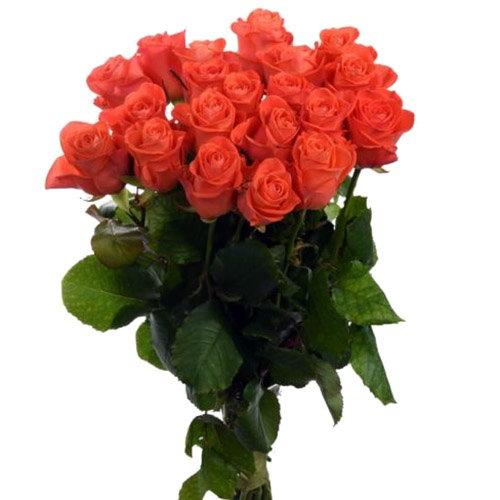 "фото букета 21 троянда ""Вау"""