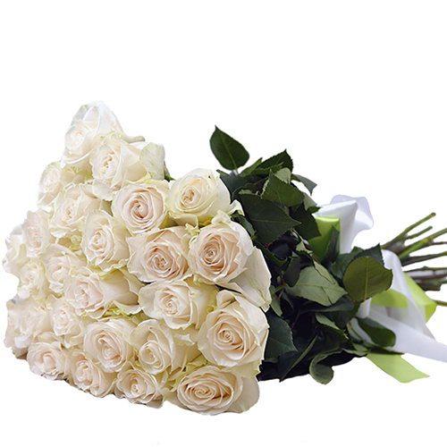 букет 25 білих троянд