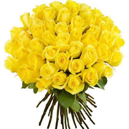 букет 51 жовта троянда