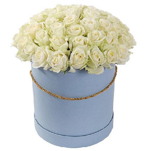 букет 51 троянда біла у капелюшній коробці