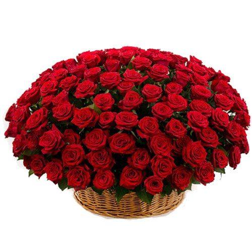 Кошик 101 червона троянда фото букета