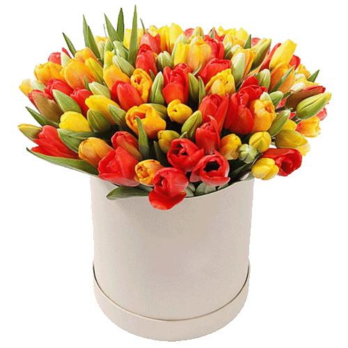 букет до свята 101 тюльпан у капелюшній коробці