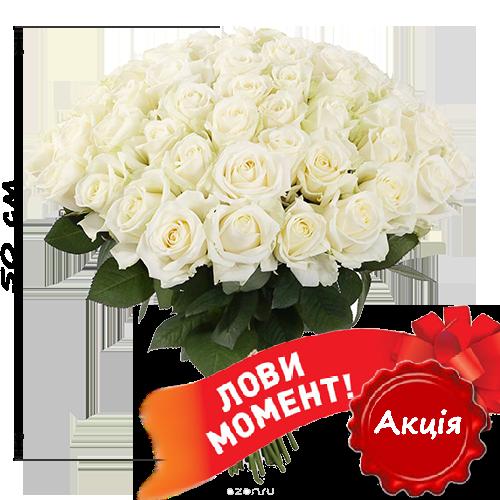 акційний букет 51 біла троянда (50 см)