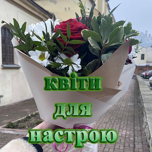 квіти в Чернивцях картинка