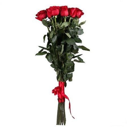 фото 11 метрових троянд