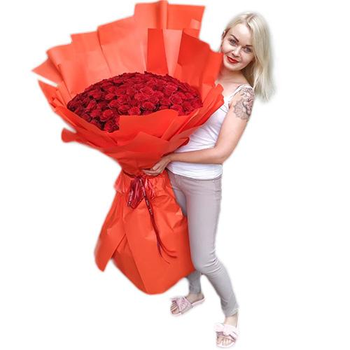 фото 101 метровая роза