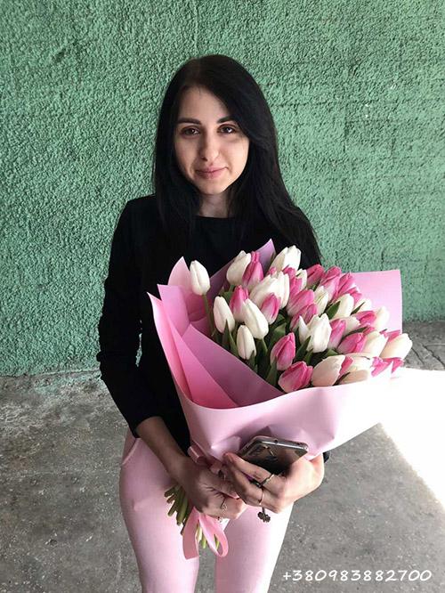 51 бело-розовый тюльпан в Черновцах фотоотчет